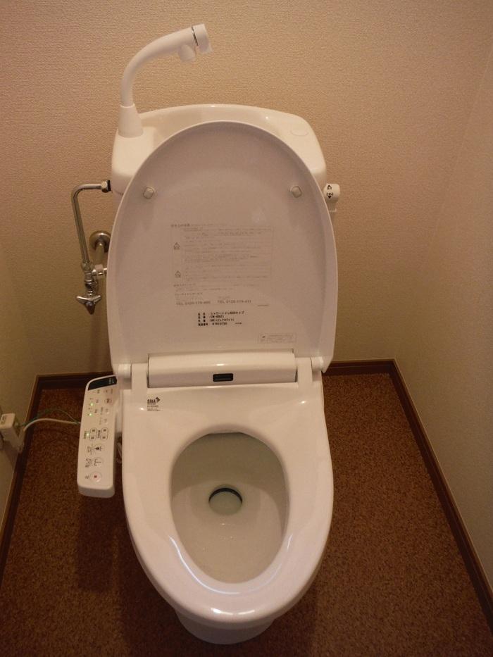 和式を洋風トイレへ改装 ~ 完成です。_d0165368_5333340.jpg