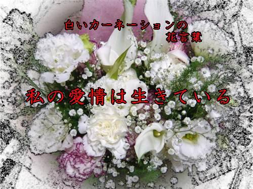 b0078675_10453680.jpg