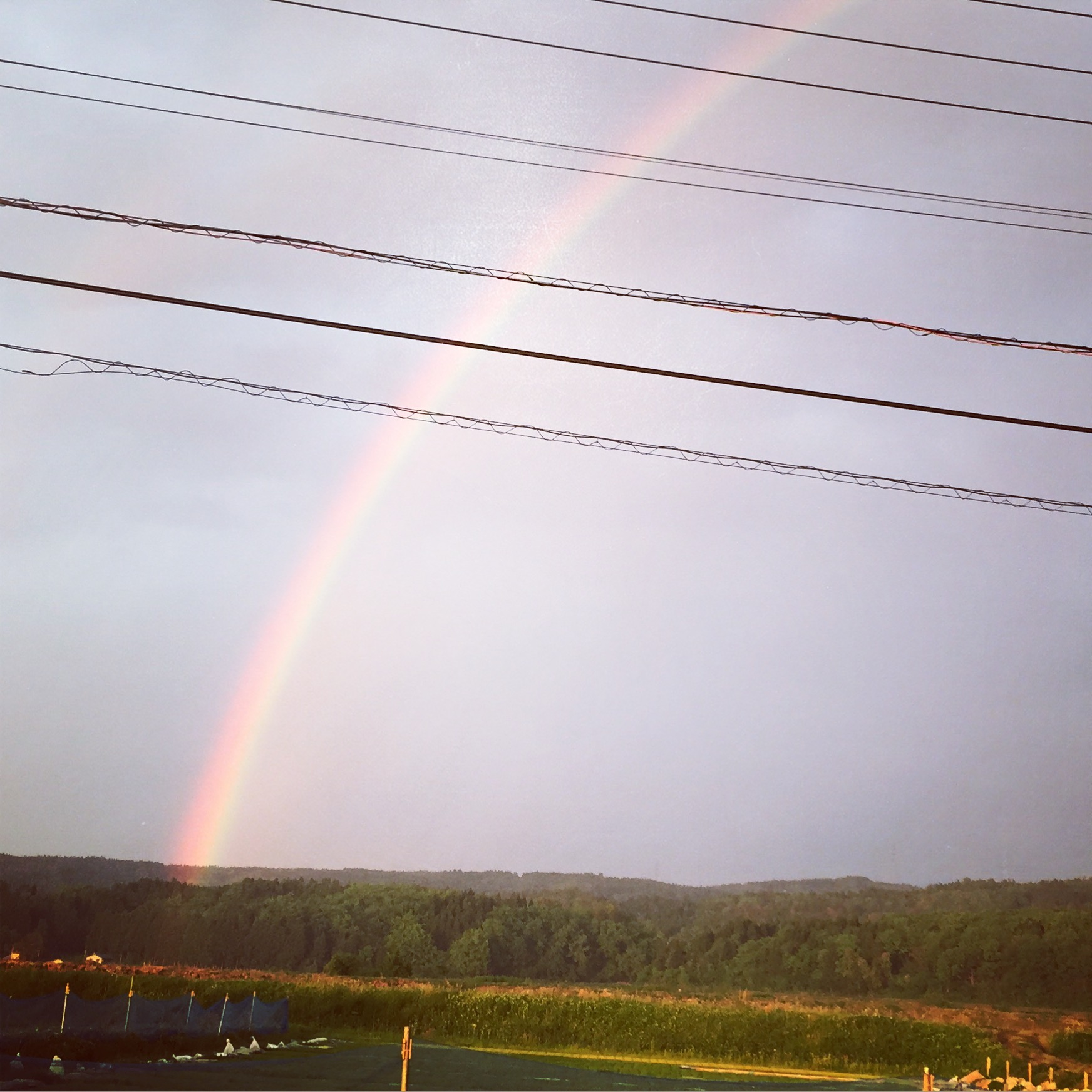 虹と夕日_d0182179_11244100.jpg