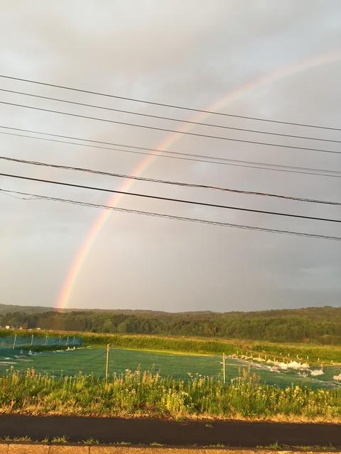 虹と夕日_d0182179_11262859.jpg