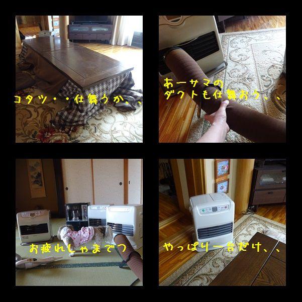 e0234881_20395775.jpg
