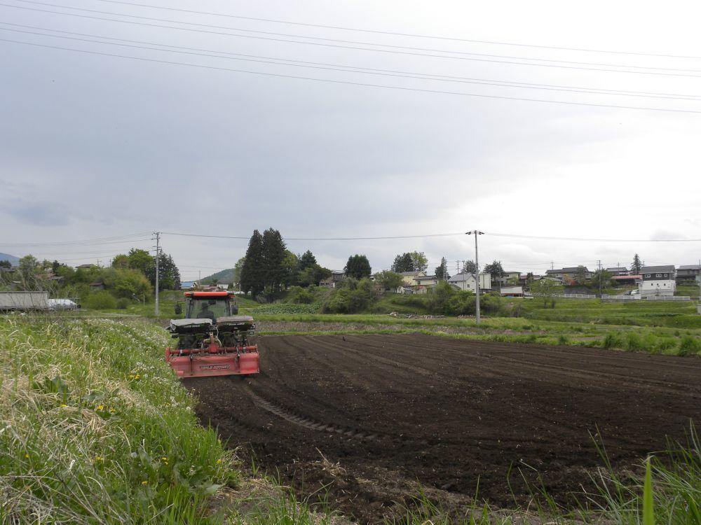 農作業現場・その①_b0329588_08510576.jpg