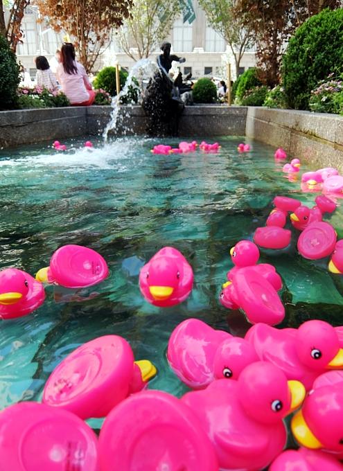 ロックフェラーセンターの噴水に謎のピンクのラバー・ダックいっぱい_b0007805_20504233.jpg