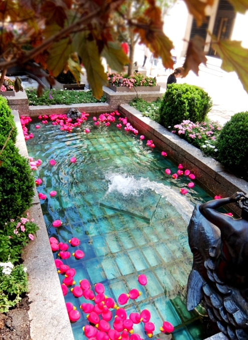 ロックフェラーセンターの噴水に謎のピンクのラバー・ダックいっぱい_b0007805_20555477.jpg