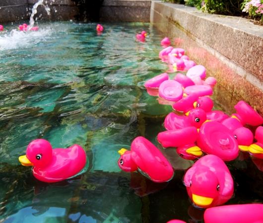 ロックフェラーセンターの噴水に謎のピンクのラバー・ダックいっぱい_b0007805_2056920.jpg