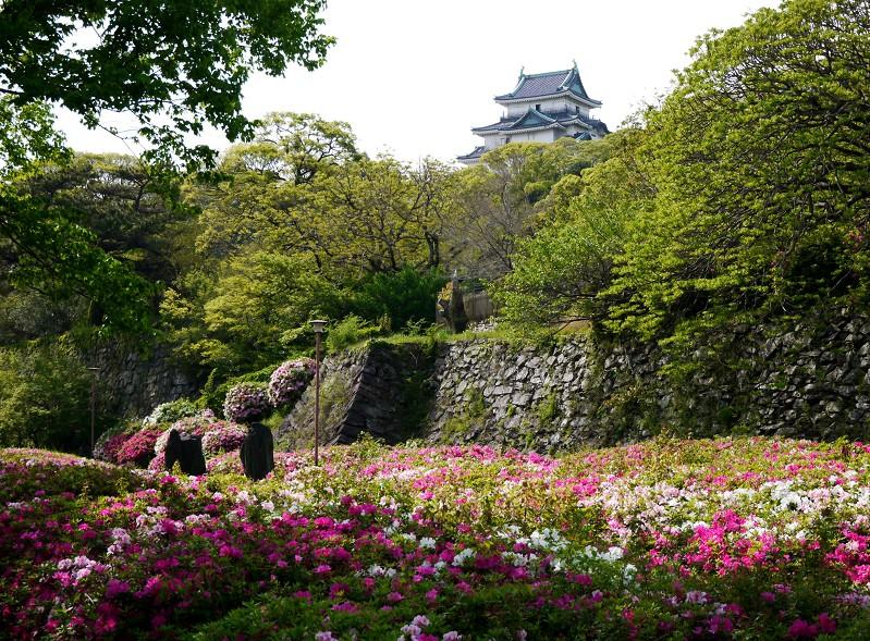 花のある風景_b0093754_1742680.jpg