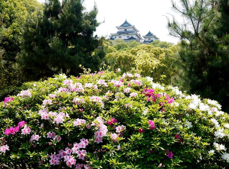 花のある風景_b0093754_17485084.jpg