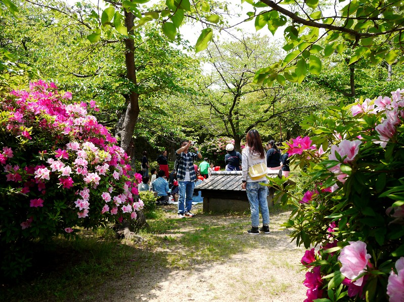 花のある風景_b0093754_18103864.jpg