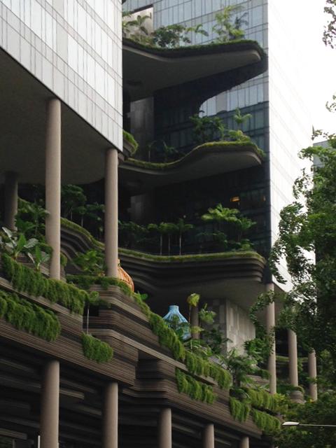 GWはシンガポールで!_b0067774_13391963.jpg