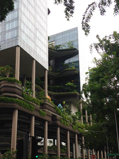 GWはシンガポールで!_b0067774_1339879.jpg
