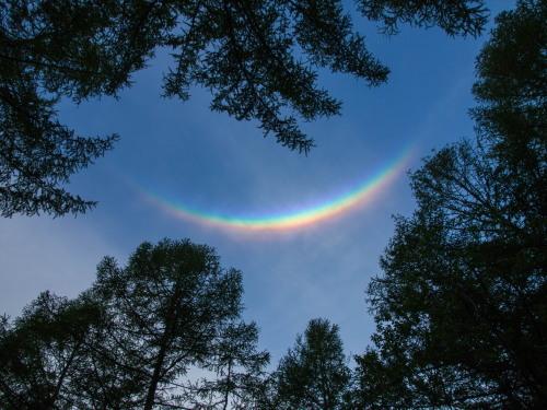 """新緑でいい季節の夕暮れ時""""不思議な虹""""が現れました。_f0276498_22304965.jpg"""
