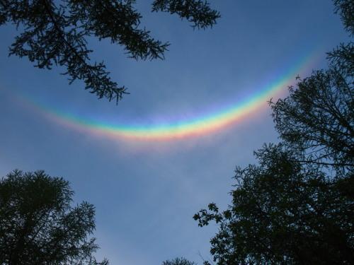 """新緑でいい季節の夕暮れ時""""不思議な虹""""が現れました。_f0276498_22341063.jpg"""