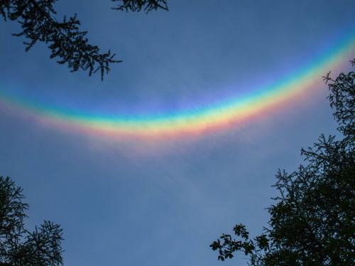 """新緑でいい季節の夕暮れ時""""不思議な虹""""が現れました。_f0276498_22342803.jpg"""