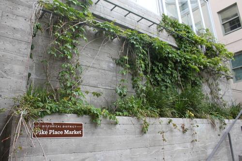 ほぼ初めてのシアトル?!その2ーPike Place Market散策_e0123104_22131376.jpg
