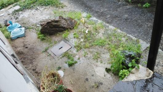 大雨洪水注意報、台風にご注意ください!_e0094315_10423456.jpg