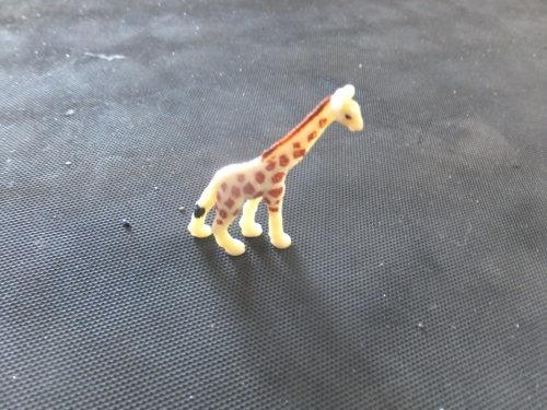 Giraffe_a0257316_23041829.jpg