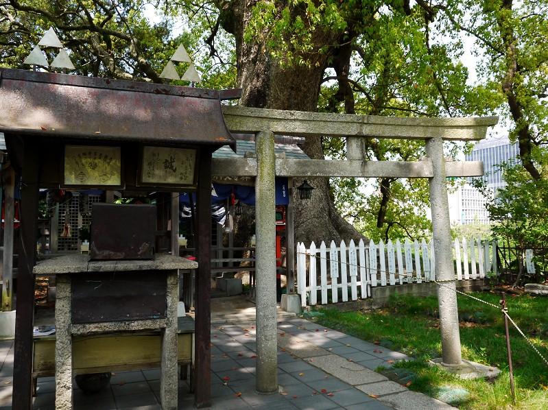 和歌山城公園にて_b0093754_20173341.jpg