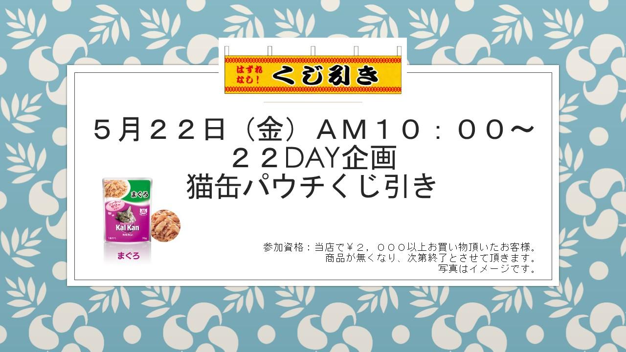 150512 22DAY企画、花金セール_e0181866_8194789.jpg