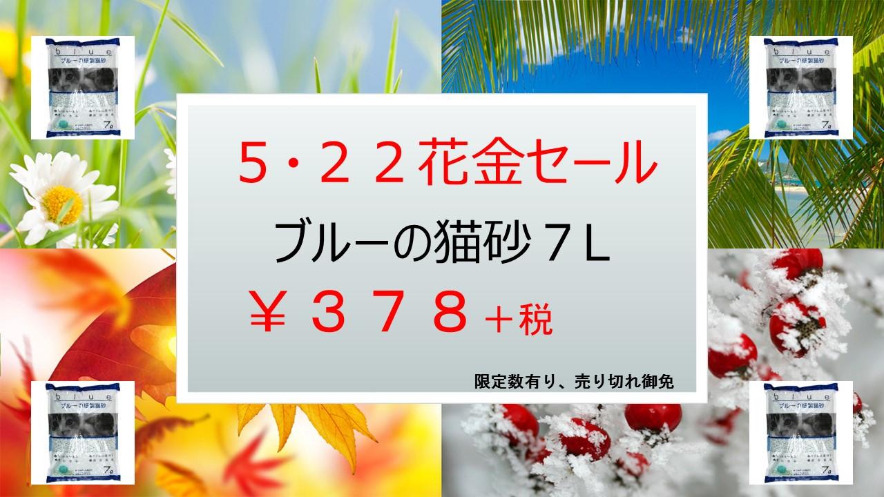 150512 22DAY企画、花金セール_e0181866_8213294.jpg