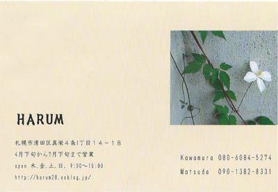 HARUMさん…苗入荷_d0214172_2185816.jpg