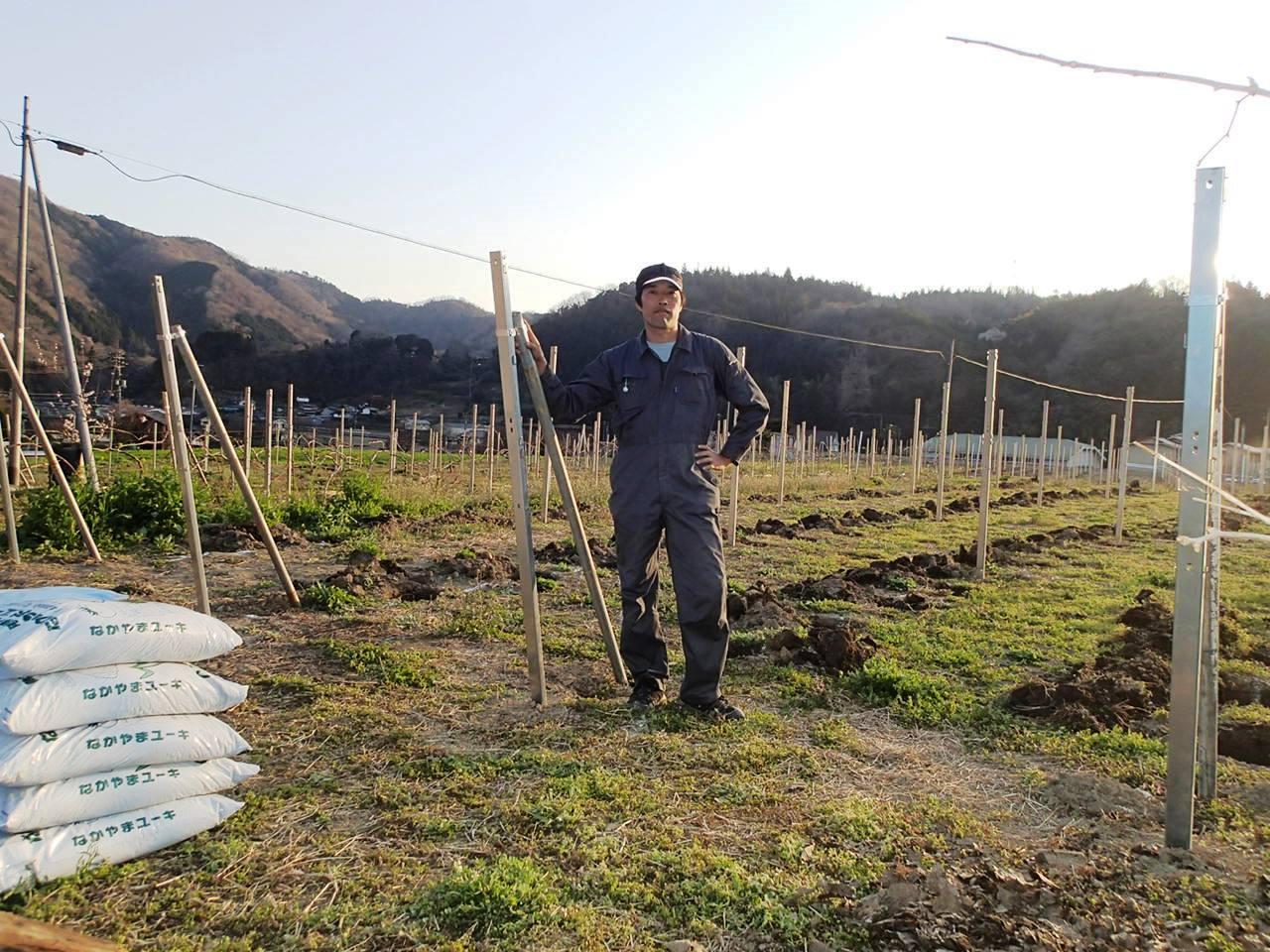 ワイン特区・続報_c0060075_922410.jpg