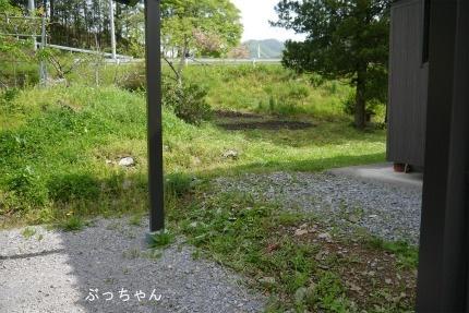 f0353990_19503152.jpg