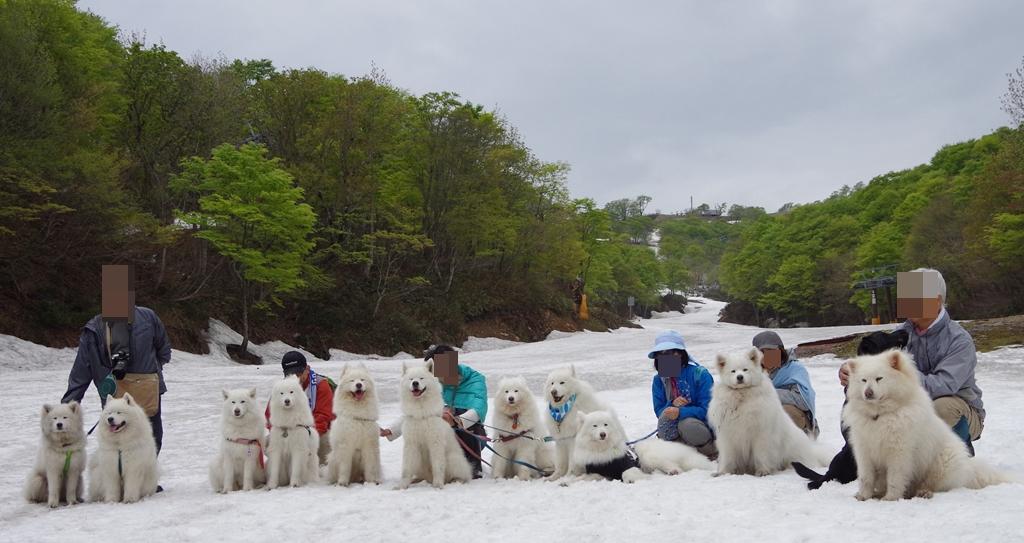 みなみちゃん地方で雪遊び_b0120492_13254169.jpg