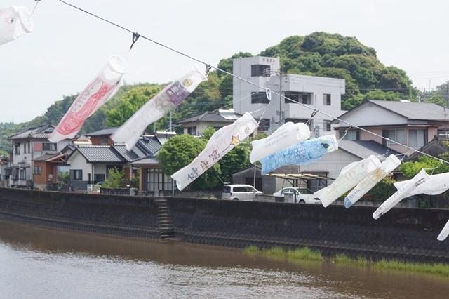 頑張れ橋下徹代表、賢い賢明な大阪の住民は橋下徹を支持するはず、橋下徹は大阪を愛している_d0181492_21432618.jpg