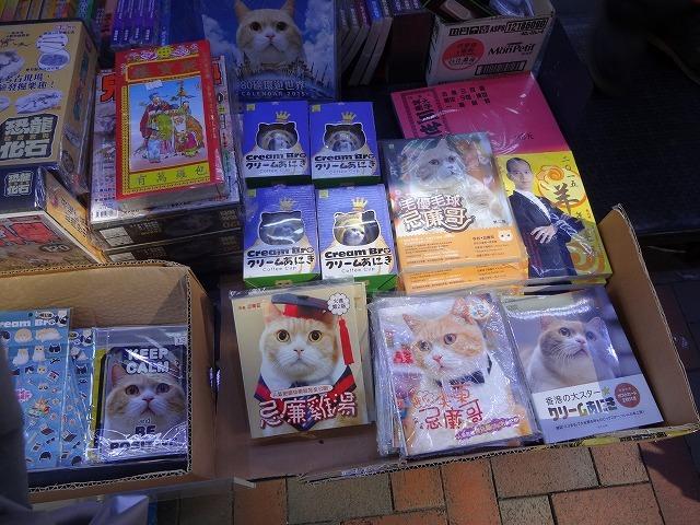 香港で1番有名な猫_b0248150_08592958.jpg