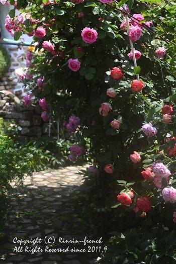 薔薇の咲く楽園へ・・・ange village_e0237680_18111276.jpg