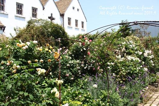 薔薇の咲く楽園へ・・・ange village_e0237680_1894224.jpg