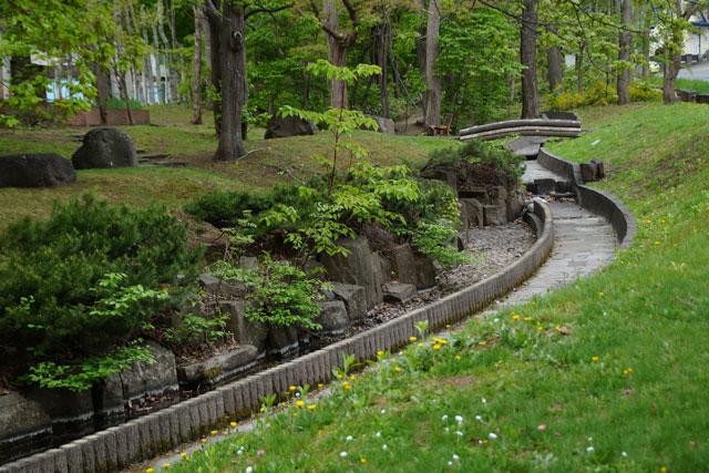 西野緑道公園散策_d0162994_8323482.jpg