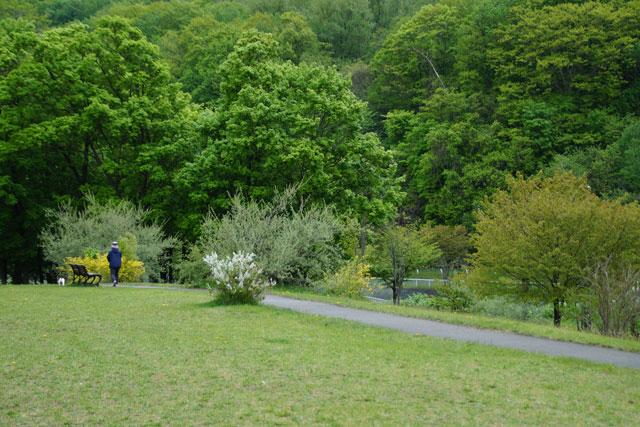 西野緑道公園散策_d0162994_832695.jpg