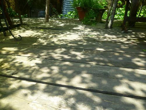 もう台風が過ぎて行った… 陽の光、木の影。_d0087595_14295766.jpg
