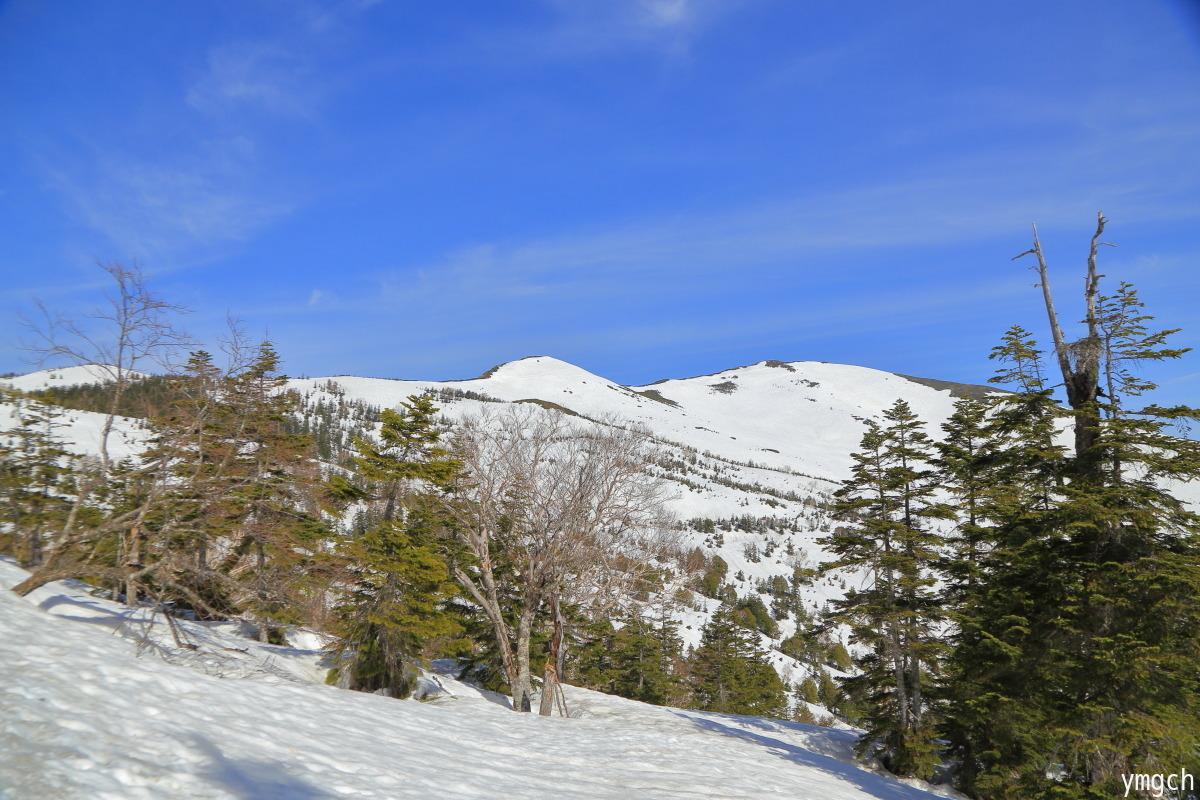 GW限定!積雪期の尾瀬(1)_f0157812_18492641.jpg