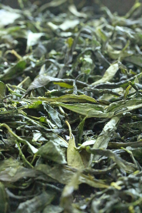 茶LON (23)_b0220318_9362763.jpg