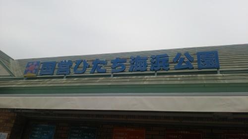 f0184119_12534957.jpg