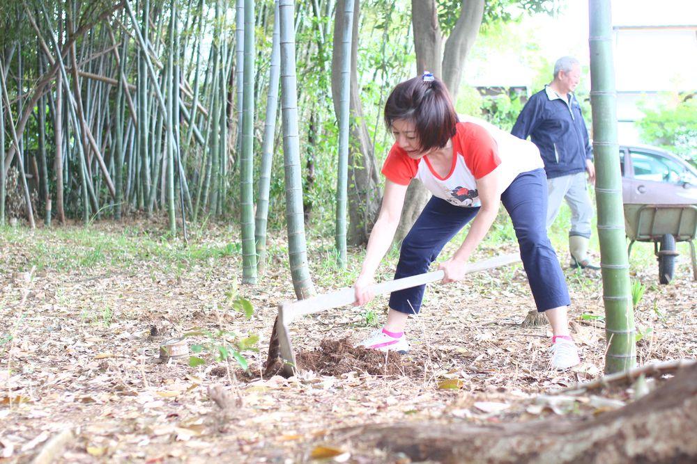 タケノコ掘りに行きました・・・・_b0093830_18494742.jpg