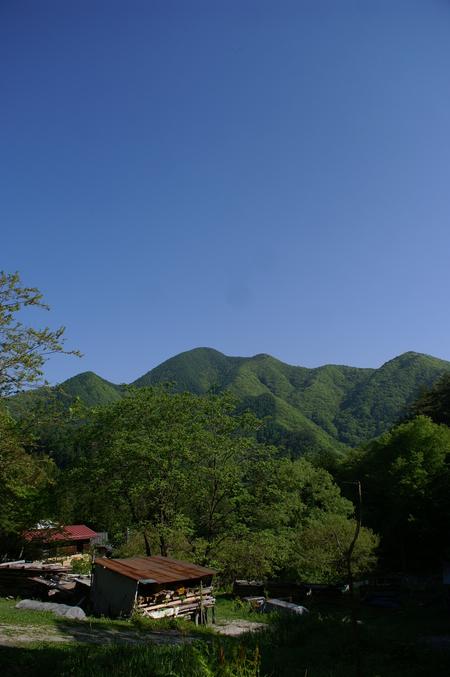 よか お天気ですこと!!_f0114346_127521.jpg