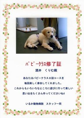 祝卒業_e0293553_07365385.jpg