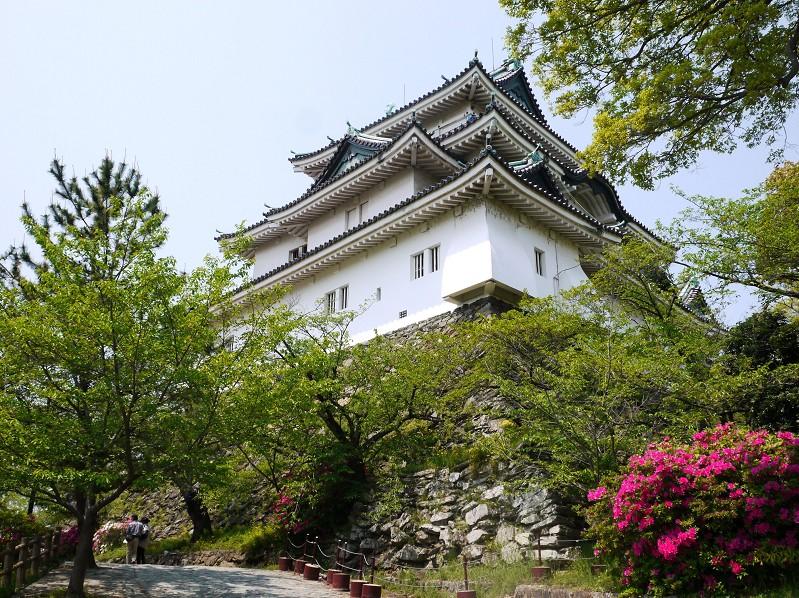 つつじ咲く和歌山城公園_b0093754_19424745.jpg
