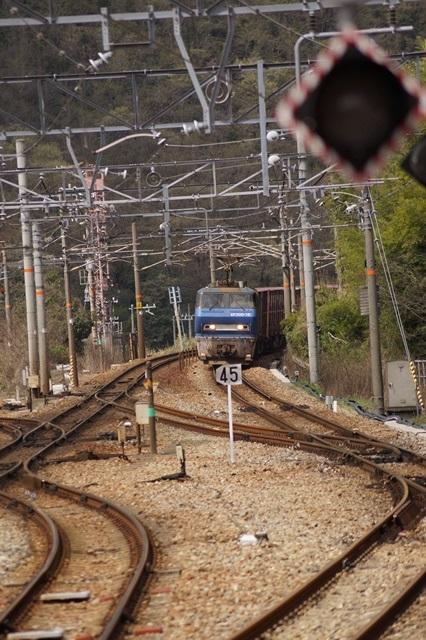 大阪都構想の賛否を掛けて住民投票中・・・貨物列車から学ぶ指導者の素質_d0181492_15575419.jpg