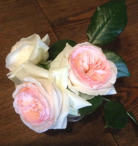 薔薇の季節♪_c0229423_216389.jpg