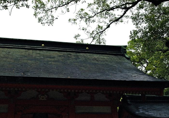 住吉神社_f0315034_13335886.jpg