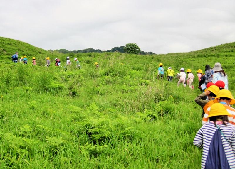 草原の体験学習_a0114743_10731.jpg