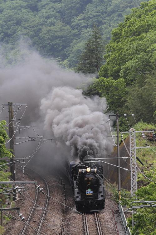 D51の煙 - 上越線 -  _b0190710_2316874.jpg