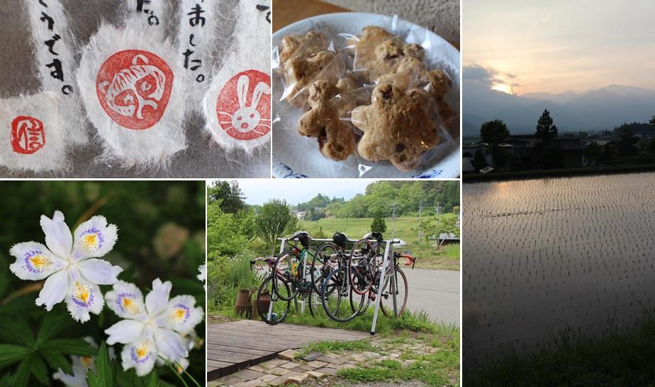 サイクリングの季節に_a0212730_21521310.jpg