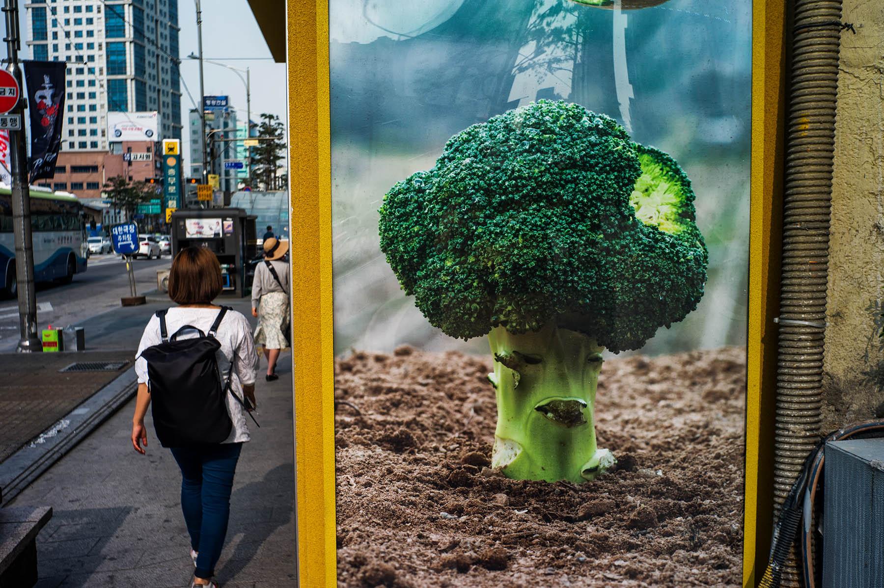 Broccoli_c0028861_21131325.jpg