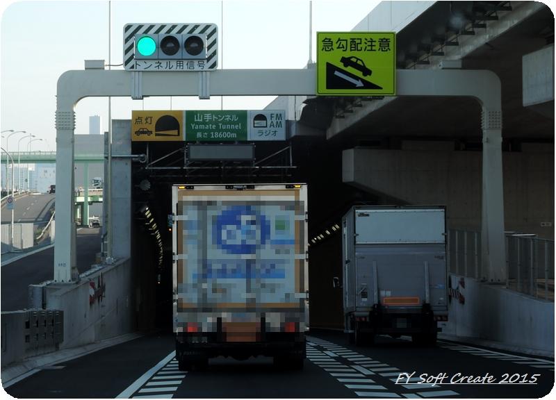 ◆ 1週間遅れのゴールデンウィーク、その1 「富士芝桜まつり」へ (2015年5月)_d0316868_962652.jpg