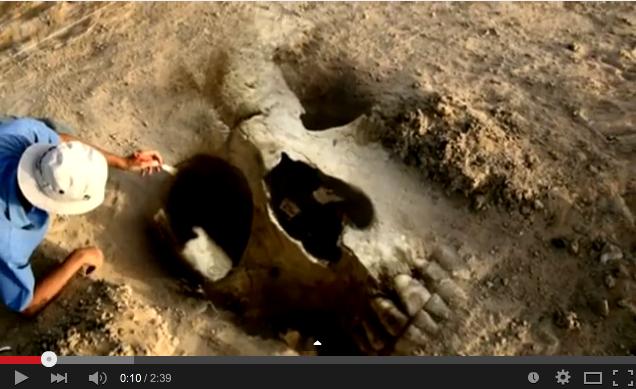 「2008年6月14日岩手・宮城内陸地震震度6強」発生!:一関の崖で巨人化石が見つかっていた!?_e0171614_16181696.png